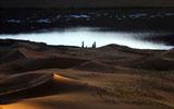 瑰丽的沙漠