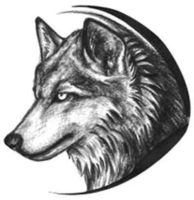男人,就应该像狼一样活着 ! - sssss520521 - sssss520521的博客