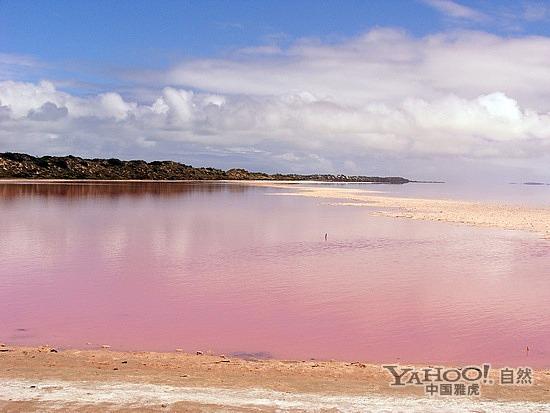 澳大利亚赫特泻湖