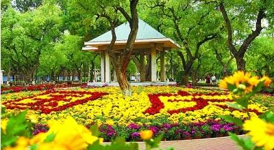 兰州植物园花团锦簇喜迎游客