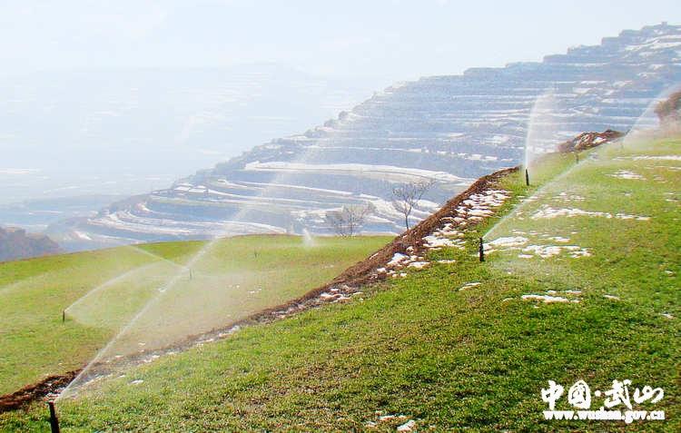 武山县龙川片区高效节水灌溉工程投入试运行