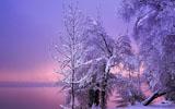 全球冬季美景