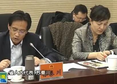 甘肃省人大代表审议省人大常委会和法检两院工作报告