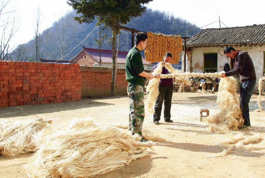 天水张家川马鹿:丝绸之路上的汉麻之乡
