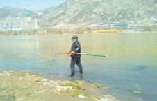 兰州七里河附近黄河边有人捕鱼