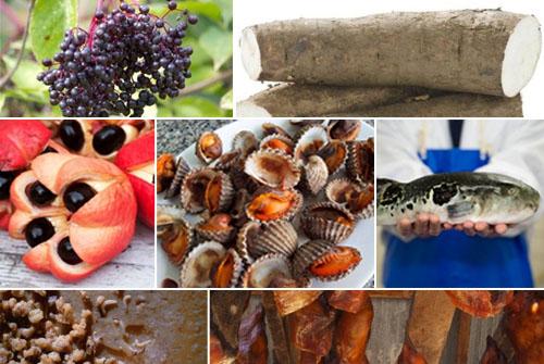 盘点全球十大危险食品 操作不当就会丧命