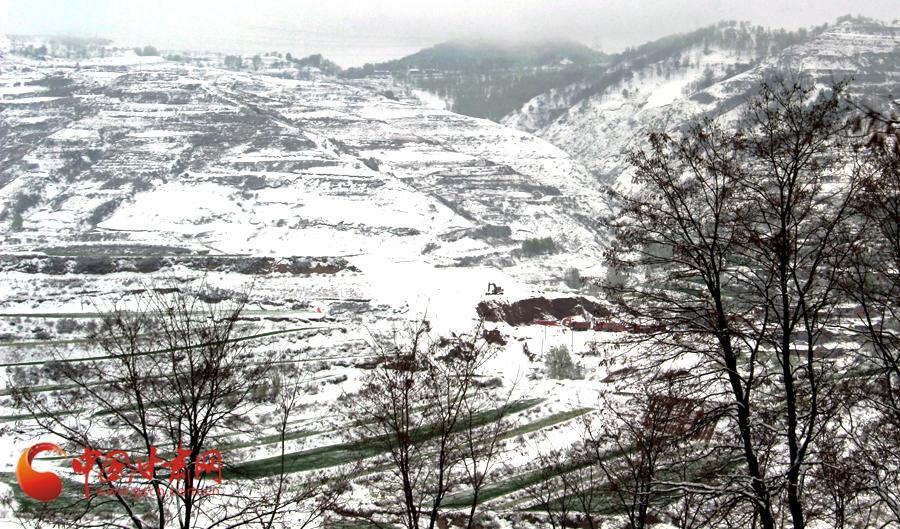 马小龙 张家川/25日上午9时左右,张家川山区雪景。通讯员马小龙摄