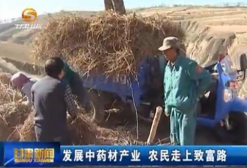 发展中药材产业 农民走上致富路