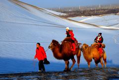 甘肃敦煌迎来新年首场降雪