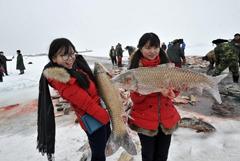 新疆博斯腾湖冬捕