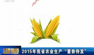 """2015年我省农业生产""""蓄势待发"""""""
