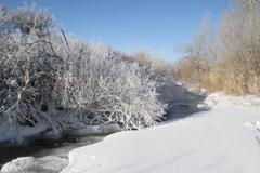 中哈界河冬景美如画