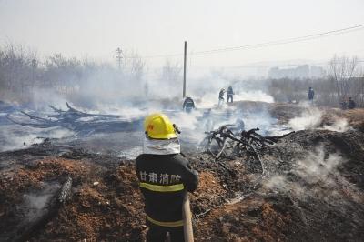 兰州安宁区绿化带起火 数十棵苗木被烧成焦炭