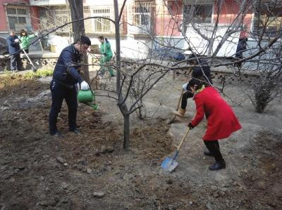 植树节:市民换种方式爱绿护绿