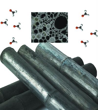 竹炭去甲醛不给力 专家建议:净化空气应多样化