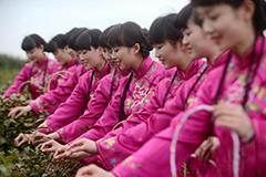 """""""何园千金""""化身""""茶娘""""演绎传统茶文化"""