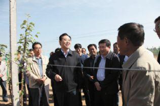 庆阳市委书记栾克军在镇原县调研时强调 引导群众创新带领群众实干高清图片