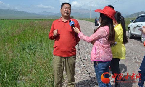本网专访甘肃省绵羊繁育技术推广站站长李范文