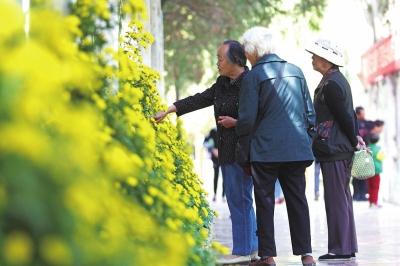 兰州:爱暖重阳节 情暖老人心
