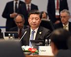 习近平出席二十国集团领导人第十次峰会第一阶段会议