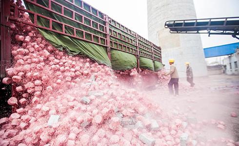 江苏数十吨残损人民币变废为宝焚烧转化为电能