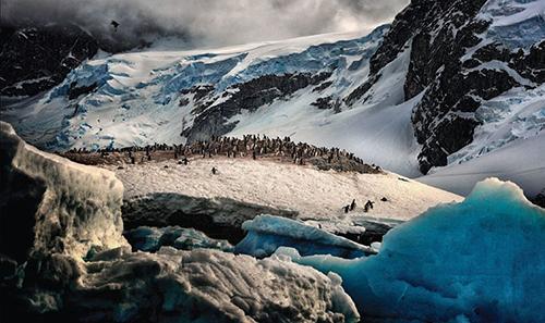 意摄影师零下90°拍南极动人心魄之美