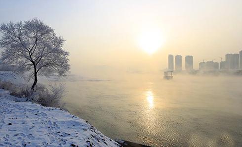 """吉林城区现大规模""""雾凇"""""""