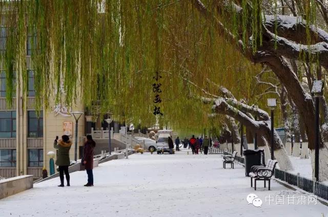 【小陇画报】瑞雪润金城,晴天雪霁下的黄河之滨