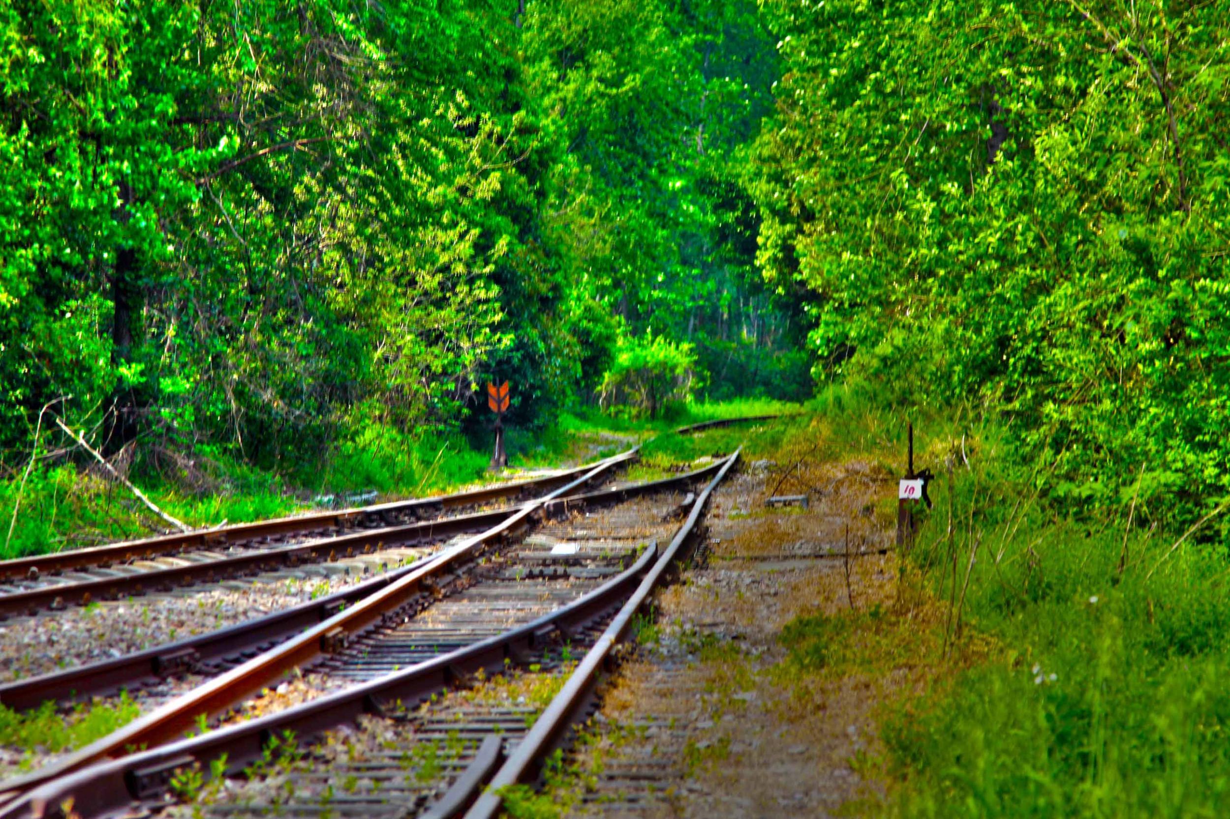 我省今年年内有4条铁路线投入运营更多出行选择!