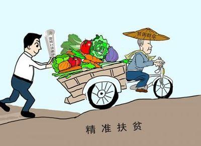 【精准扶贫 共奔小康】金昌:富民项目助力精准扶贫