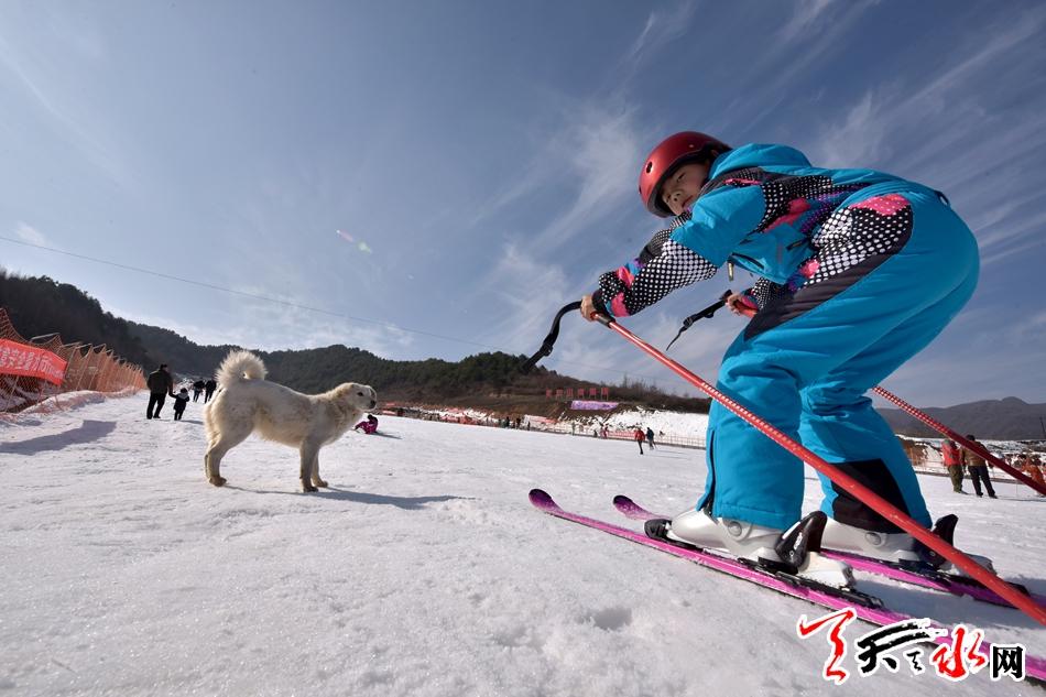 天水麦积山2016年冰雪旅游启动