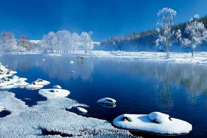 极寒、极景:零下40℃的大兴安岭林海雪原