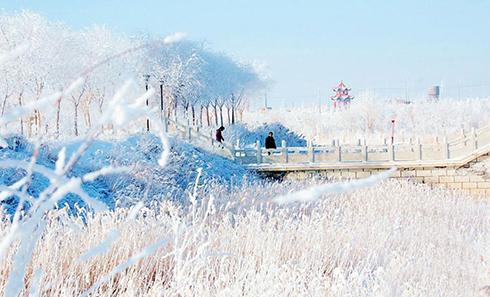 甘肃西部小城雾凇美景似童话世界