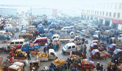 定西岷县当归城药材市场交易兴旺