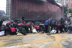 福建集装箱货车侧翻小麦倾泄 百余人哄抢近8吨
