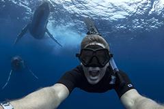 摄影师澳水域同两头巨鲸玩自拍