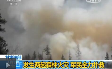 甘肃迭部:发生两起森林火灾 军民全力扑救