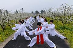 贵州镇远桃花园 春风得意百花艳