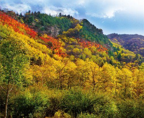 肃天祝三峡森林公园 甘肃面积最大国家级森林公园