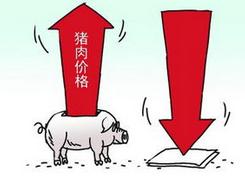 【物价】甘肃猪粮比价进入红色预警区域价格持续走高