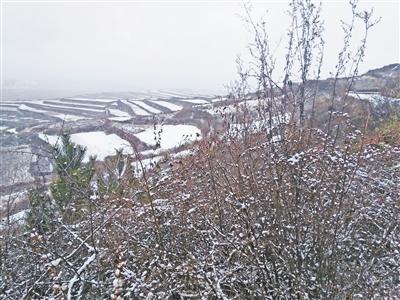 甘肃榆中发现抗战功臣吕继周墓地