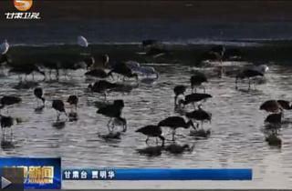 甘肃省境内三大水系4月起全面禁渔