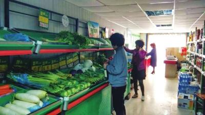 兰州市西固区13种低价菜投放市场
