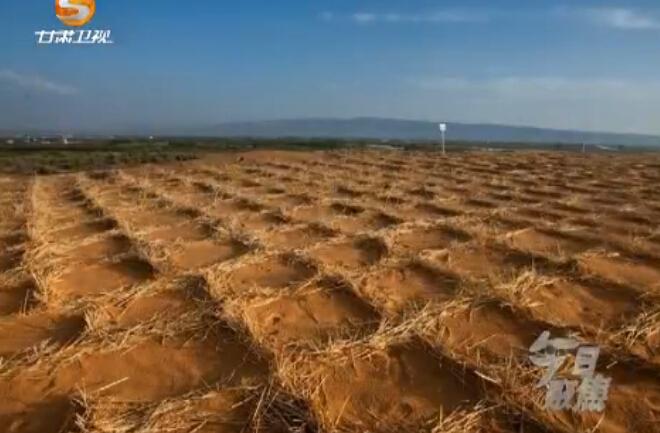 甘肃:沙漠治理迈入机械化时代