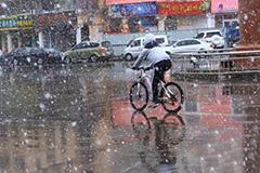 """甘肃张掖四月大风伴飞雪 """"染白""""城市"""