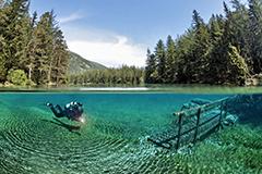 潜水者潜入翠湖拍照 美不胜收