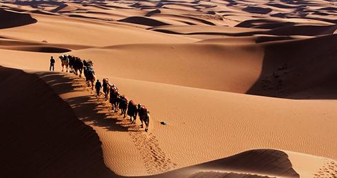 腾格里沙漠之大漠驼铃