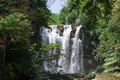 贵州赤水四洞沟瀑布群游客如织