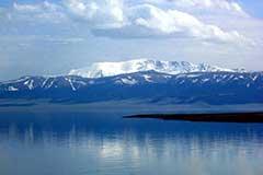 新疆赛里木湖雪山花海 风光如画