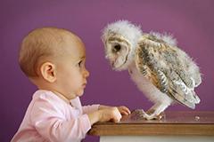 每个宝宝都是搞笑的小天使